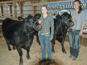 Chesterville Fair Youth Beef Show