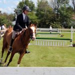Hunter Horse Show - Chesterville Fair